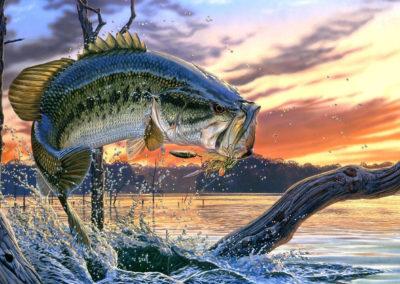 Fishing-Guide-Service-LaCoosa-Marina